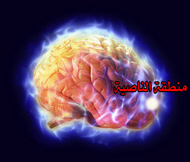 فتبارك الله أحسن الخالقين electric_brain copy1